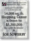 Detroit 14,000 SF Shopping Ctr